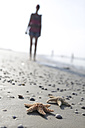 Germany, Lower Saxony, East Frisia, Langeoog, two sea stars and silhouette of a woman at the beach - JATF000353