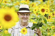 Germany, Cologne, senior with sunflowers - JATF000355