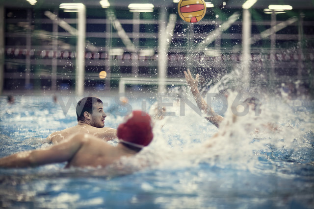 Water polo players in water - SEF000050