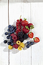 Yellow and red raspberries (Rubus idaeus), blackberries (Rubus sectio Rubus), strawberries (Fragaria), Blaubeeren (Vaccinium myrtillus), red currants (Ribes) on white wooden table, studio shot - CSF020072