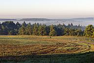 Germany, Bavaria, Morning mist seen from Arnsberg castle - LB000322
