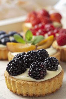 Pies with vanilla pudding and different fruits, studio shot - CSF020134
