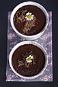 Chocolate pudding with chocolate shavings - ODF000571