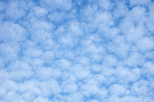 Germany, Baden-Wuerttemberg, blue sky with cirrocumulus clouds - ELF000521