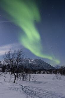 Norway, Province Troms, View of Aurora Borealis - PA000043