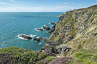 UK, Wales, Anglesey, Holy Island, cliff coast of South stack - ELF000536