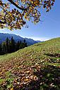 Germany, Bavaria, Garmisch-Partenkirchen, Werdenfelser Land, view from Elmau Alp - LB000329