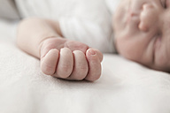 Little hand of sleeping male newborn, close-up - JATF000435