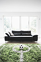 Germany, Cologne, Football field in living room - PDF000541
