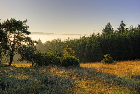 Germany, Bavaria, Upper Bavaria, Altmuehl valley, Schellenburg in front of the foggy Altmuehl valley - LB000393