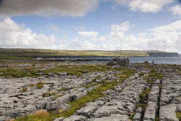 Irland, County Clare, Coastal landscape near Doolin - SRF000360