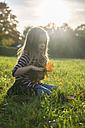 Little girl with autumn leaves sitting on a meadow - SAR000121