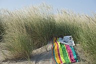 Italy, Adriatic, newspaper, sunglasses and towel on sand dune with grass - CRF002507