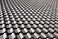 Tiled roof - TCF003647