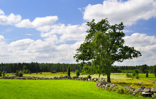 Sweden, Smaland, Kalmar laen, Vimmerby, Fjaelster, natural stone wall from, erratic blocks - BT000021