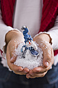 Hands of little girl holding snow and toy snowman - STB000114