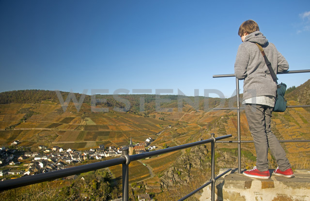 Germany, Rhineland-Palatinate, Mayschoss, Boy looking at vineyard in autumn - WGF000093
