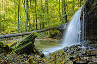Germany, Swabian-Franconian natural preserve, waterfall, Struempfelbach - STSF000203