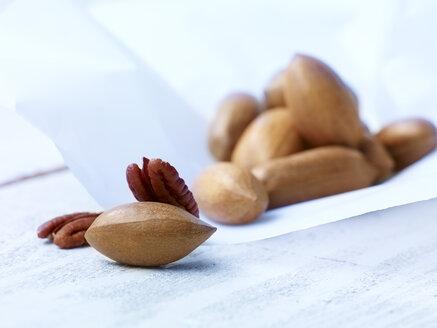 Pecan nuts, studio shot - SRSF000236