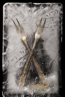 Frozen meat forks - AWDF000723