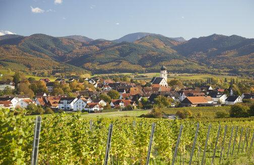 Germany, Baden-Wuerttemberg, Kirchhofen in Markgraflerland - DHL000156