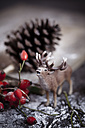 Toy stag, bouquet of rose hips, pine cone and artificial snow on wooden table - SBDF000336