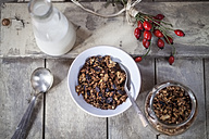 Bowl with granola made of baked oats, nuts and raisins, bottle of milk and rose hips on wooden board - SBDF000339
