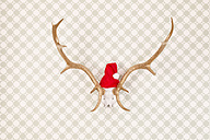 Golden varnished antler with Santa hat on wallpaper, studio shot - DRF000272