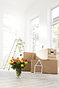 Cardboard boxes and bunch of flowers in new home - FKF000305