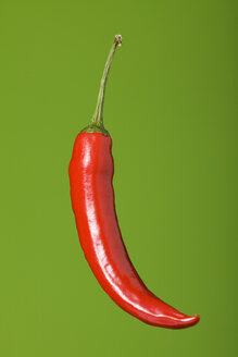 Red pepper Capsicum), studio shot - WSF000009