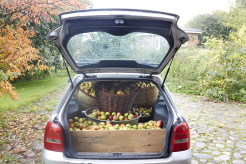 Germany, Schleswig-Holstein, Car boot full of apples - TK000199