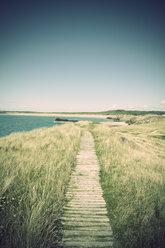 Great Britain, Wales, Ynys Llanddwyn, trail at coast - ELF000601
