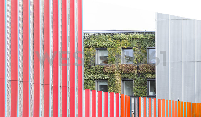 UK, London, view at facade greening - DIS000147