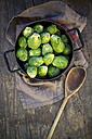 Brussels sprouts (Brassica oleracea var. gemmifera) in iron cooking pot - LVF000324