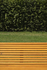 Germany, Constanze, wooden bench in front of a hedge - AX000551
