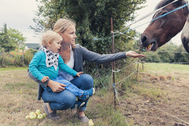 Mother and son feeding a horse with apples - MFF000656