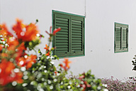 Spain, Lanzarote, Puerto del Carmen, Green shutters on house front - JAT000468