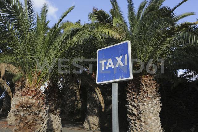 Spain, Lanzarote,Puerto Calero, Taxi sign under palms - JAT000451 - Jan Tepass/Westend61