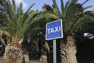 Spain, Lanzarote,Puerto Calero, Taxi sign under palms - JAT000451