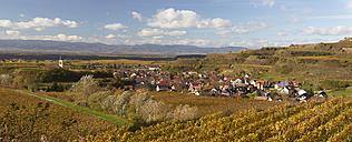 Germany, Baden-Wuerttemberg, Oberrotweil, district of Vogtsburg im Kaiserstuhl, in the background Vosges Mountains - DHL000194