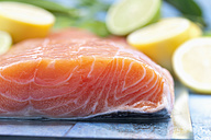 Salmon fillets (Salmo salar) and sliced lemons on blue wooden table - CSF020335