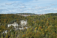 Germany, Baden-Wuerttemberg, Irndorf over autumnal beech forest - EL000651