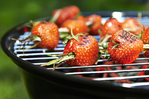 Grilled strawberries spicked with rosmary - SRSF000403