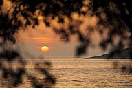 Croatia, Vrsar, Sunset over sea with trees - KJF000260
