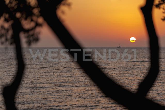 Croatia, Vrsar, Sunset over sea with trees and boat - KJ000256