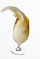 Beer in beer glass - AKF000263