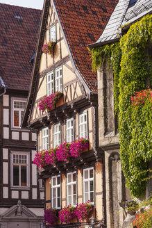 Germany, Saxony-Anhalt, Quedlinburg, Timber-framed houses - WD002055