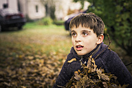 Little boy holding autumn leaves in his arms - MJF000423
