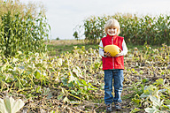 Little boy holding pumpkin - MJF000404