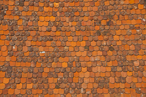Part of a roof with beaver tail tiles - WGF000099